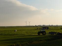 Dutch countryside (Marken)