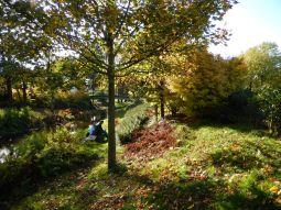 Autumn in Westerpark (Amsterdam)